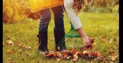 Collecte spéciale des matières organiques (gazon et feuilles)