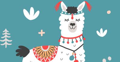 Lamas en couleurs